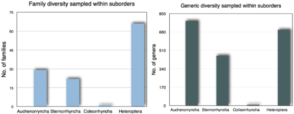 Figure 2 Histograms depicting number of sequences found on GenBank given OTT names. 2A) Hemiptera families within suborders with nucleotide sequence data on NCBI GenBank. 2B) Hemiptera genera within suborders with nucleotide sequence data on NCBI GenBank.